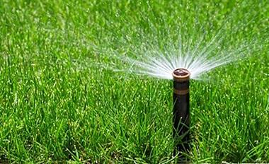 Direct Irrigation